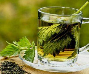 Limpieza del riñon con una bebida natural