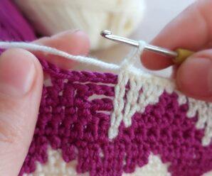 Puntada para Manta o Chaleco a Crochet muy Bonito
